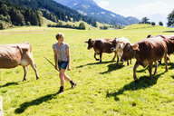 Woman leading herd of cows on field, Sonthofen, Bayern, Germany - CUF49871
