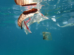 Plastic waste floating in the sea - GNF01464