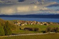 Switzerland, Swiss plateau, Waadt, Bonvillars, - LBF02422