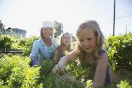Grandmother and granddaughters tending to plants in garden - HEROF28860