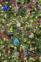 Close-up of Christmas Tree - MINF10731