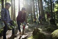Volunteers planting trees in woods - HEROF29923