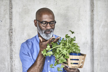 Mature businessman holding plants at concrete wall - FMKF05490