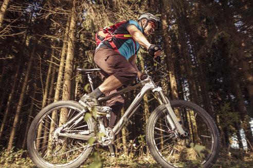Man riding mountainbike on forest track - SEBF00064