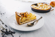 Piece of apple pie on plate - ERRF00795