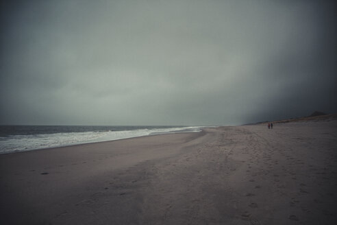 Germany, Sylt, Kampen, lonely beach, sea, winter - ANHF00085