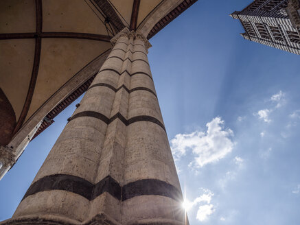 Italy, Tuscany, Siena, Siena Cathedral, tower and column against the sun, low angle view - LAF02238