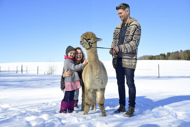 Happy family with alpaca on a field in winter - ECPF00565