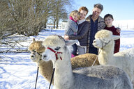 Family with alpacas on a field in winter - ECPF00574