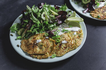 Vegetable cheese fritter with salad on plate - STBF00258