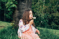 Portrait of girl sitting on a meadow blowing blowball - ANHF00103