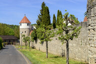 Germany, Bavaria, Franconia, Lower Franconia, Eibelstadt, city wall with tower - LBF02472