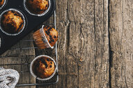 Home-baked muffins with chocolate chips in muffin tray on cooling grid - ERRF00822