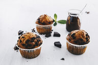 Home-baked muffins with chocolate chips - ERRF00825