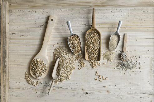 Organic wheat, rye shot, amaranth, spelt, buckwheat and oat on shovels and on wood, from above - ASF06325
