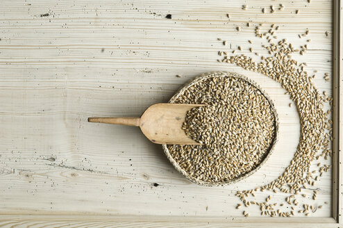 Organic wheat whole grain in bast bowl on wood - ASF06331