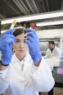 Scientist examining blood samples in laboratory - HEROF30953