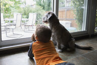 Curious boy laying at patio window with dog - HEROF31081