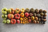 Overhead still life multicolor variety heirloom tomatoes in rows - HEROF31280
