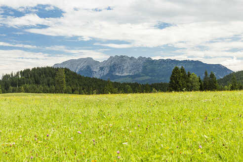 Austria, Styria, meadow with view on Schaertenspitze - AIF00657