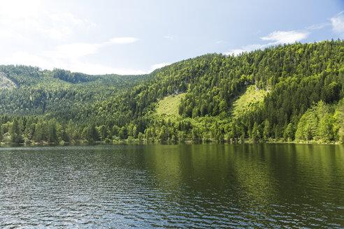 Austria, Styria, Salzkammergut, Oedensee - AIF00660