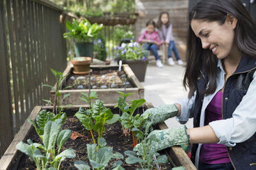Smiling woman gardening on balcony - HEROF31692