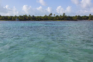 Tropical ocean with palm trees on beach in background - HEROF31722