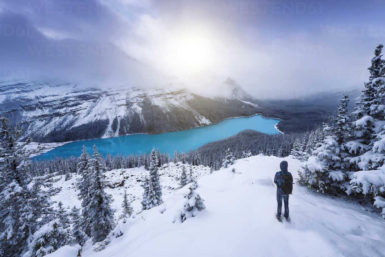 Canada, Alberta, Banff National Park, Peyto Lake, man enjoying view - EPF00584 - Maria Elena Pueyo Ruiz/Westend61