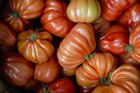 Oxheart tomatoes on market - CRF02848