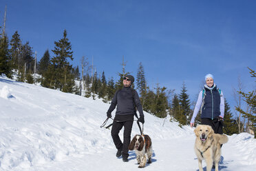 Germany, Bavarian Forest, Lusen, woman and man with dogs hiking in winter - MAEF12828
