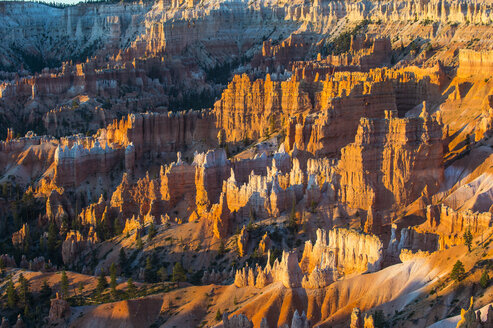 USA, Utah, Bryce Canyon National Park, sandstone formations in the evening light - RUNF01657
