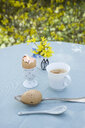 Breakfast table with Eatser decoration in garden - GISF00409