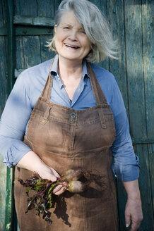 Senior woman harvesting beetroot, garden apron made of old linen pants - GISF00411