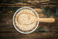Oats in bowl, from above - GIOF05931