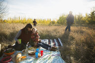 Family enjoying picnic in sunny field - HEROF33248