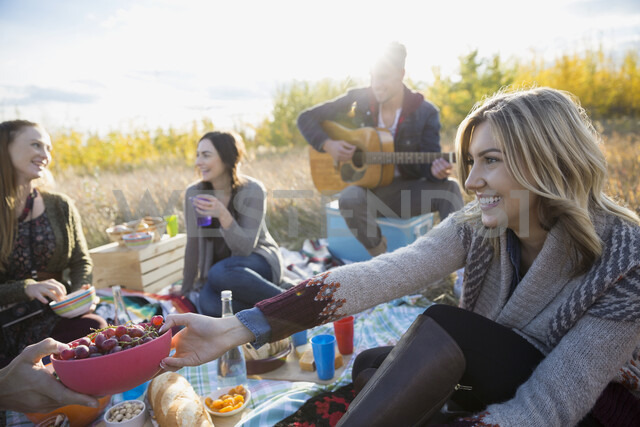 Friends hanging out enjoying picnic in sunny field - HEROF33281 - Hero Images/Westend61