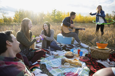 Friends hanging out enjoying picnic in sunny field - HEROF33284