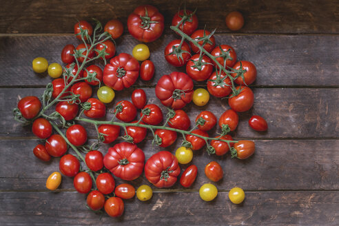 Various sorts of tomatoes on wood - STBF00283