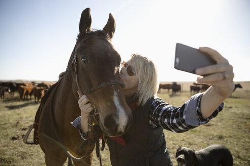 Female rancher kissing horse, taking selfie on sunny farm - HEROF33704