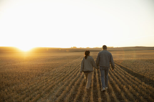 Farmer couple holding hands, walking in sunny harvested field at sunset - HEROF33734