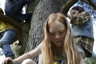Redheaded girl with friends climbing in a tree - AMEF00052