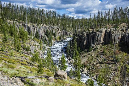 USA, Wyoming, Yellowstone National Park, Lewis river - RUNF01752