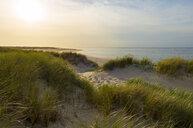 Germany, Sylt, North Sea, sunset - MKFF00490