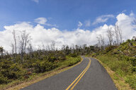 USA, Hawaii, Big Island, empty road - FOF10515