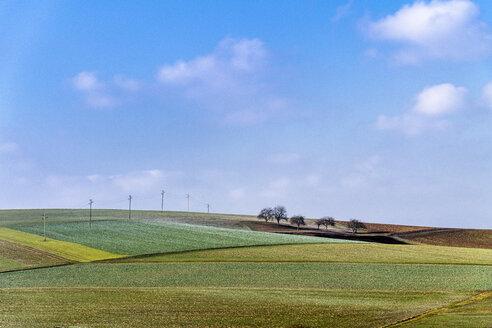 Germany, Baden-Wuerttemberg, Taubertal, fieldscape - EGBF00294