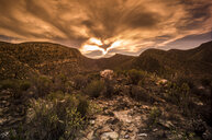 South Africa, Cape Town, landscape at sunset - ZEF16137