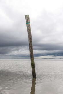 Germany, Nessmersiel, wooden stake in the sea - EGBF00298