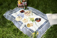Healthy picnic snacks on a blanket in grass - IGGF00975