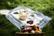 Healthy picnic snacks on a blanket in grass - IGGF00978