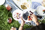 Top view of woman eating berries at a picnic in park - IGGF00993